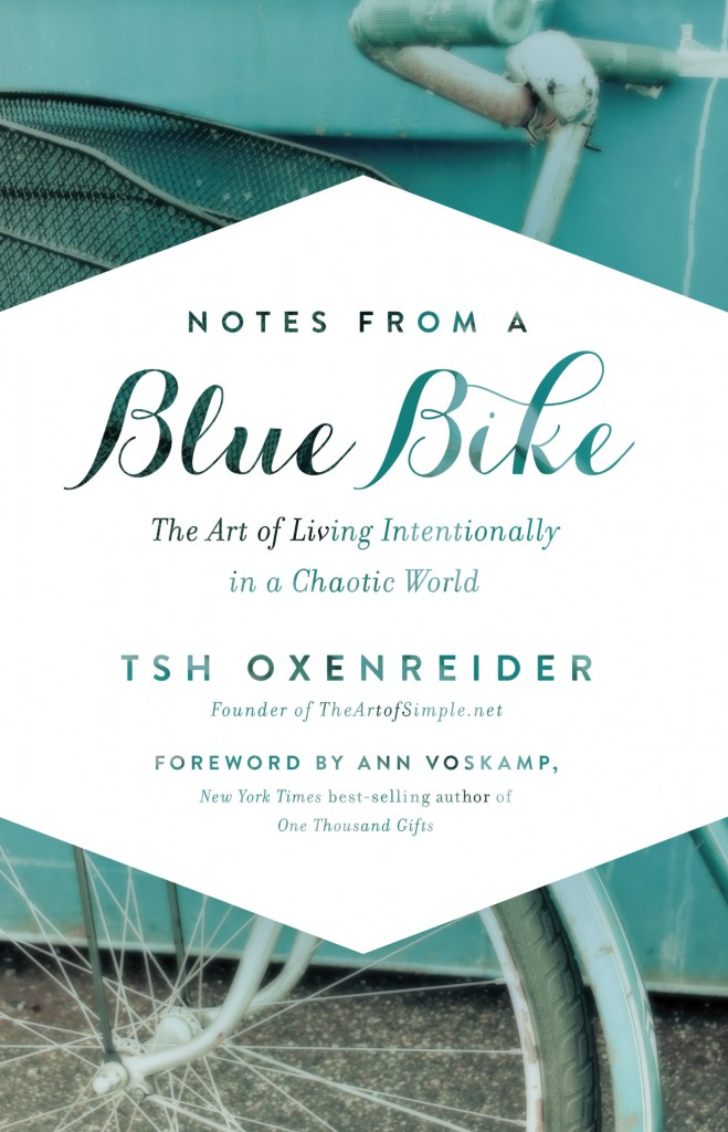Notes from a Blue Bike Cover high rez