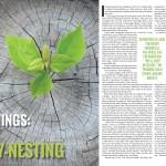 Expat Empty-Nesting
